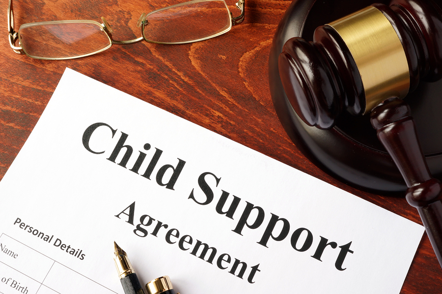 Child Support Law & Litigation